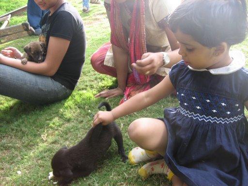 Future Target of Maneka Gandhi / PETA