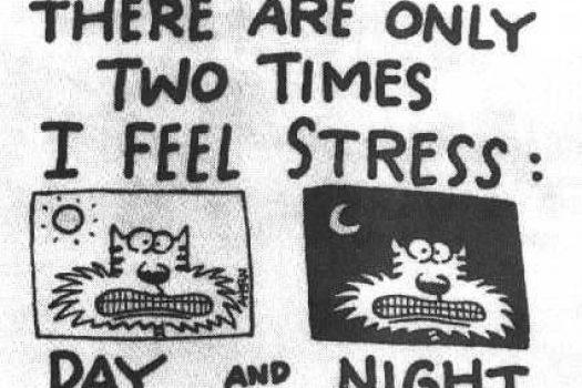 Upcoming Vacation Stress