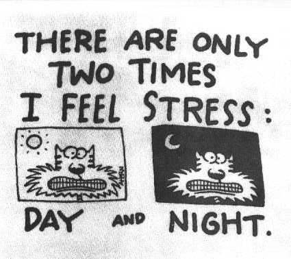 Stressed Day and Night