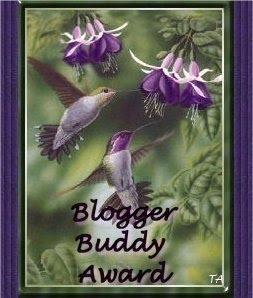 The Blogger Buddy Award from Megz