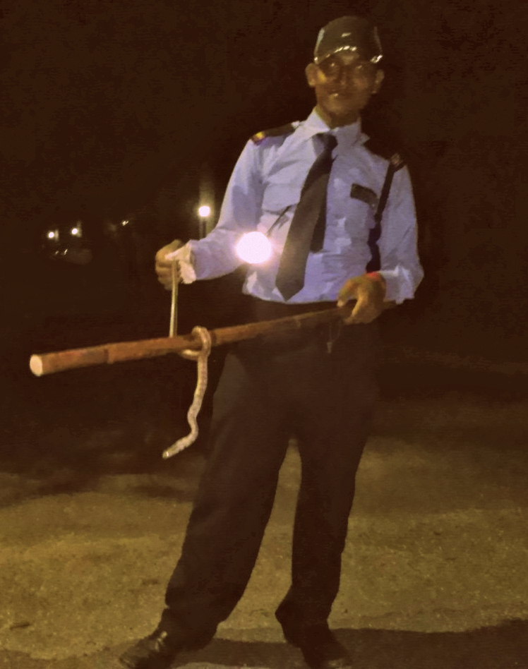 Our security guard caught the snake before it could hurt anyone.