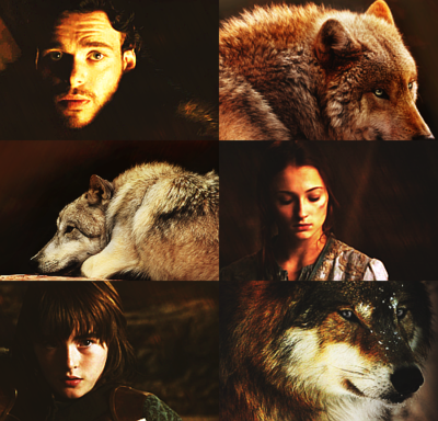 The Starks and their Wolves
