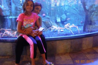 Aquarium and Kidzania – Dubai Mall