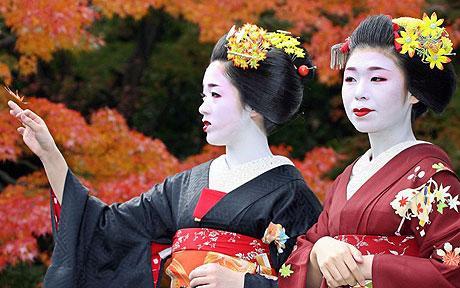 YM-Geisha_1008302c