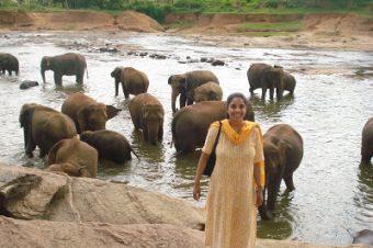 Sri Lanka Highlights – Day 2