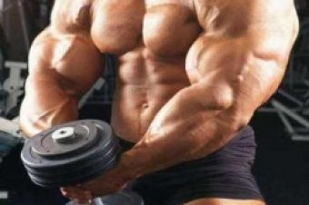 Diet Essentials for Body Builders