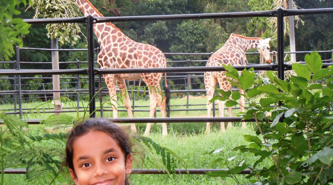 Posing in front of the giraffes