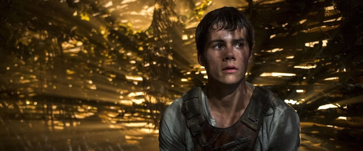 THE MAZE RUNNER  Dylan O'Brien stars as Thomas in THE MAZE RUNNER.  TM and © 2014 Twentieth Century Fox Film Corporation. All Rights Reserved. Not for sale or duplication.