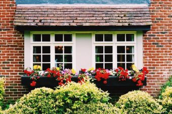 Improve Your Home's Curb Appeal This Fall