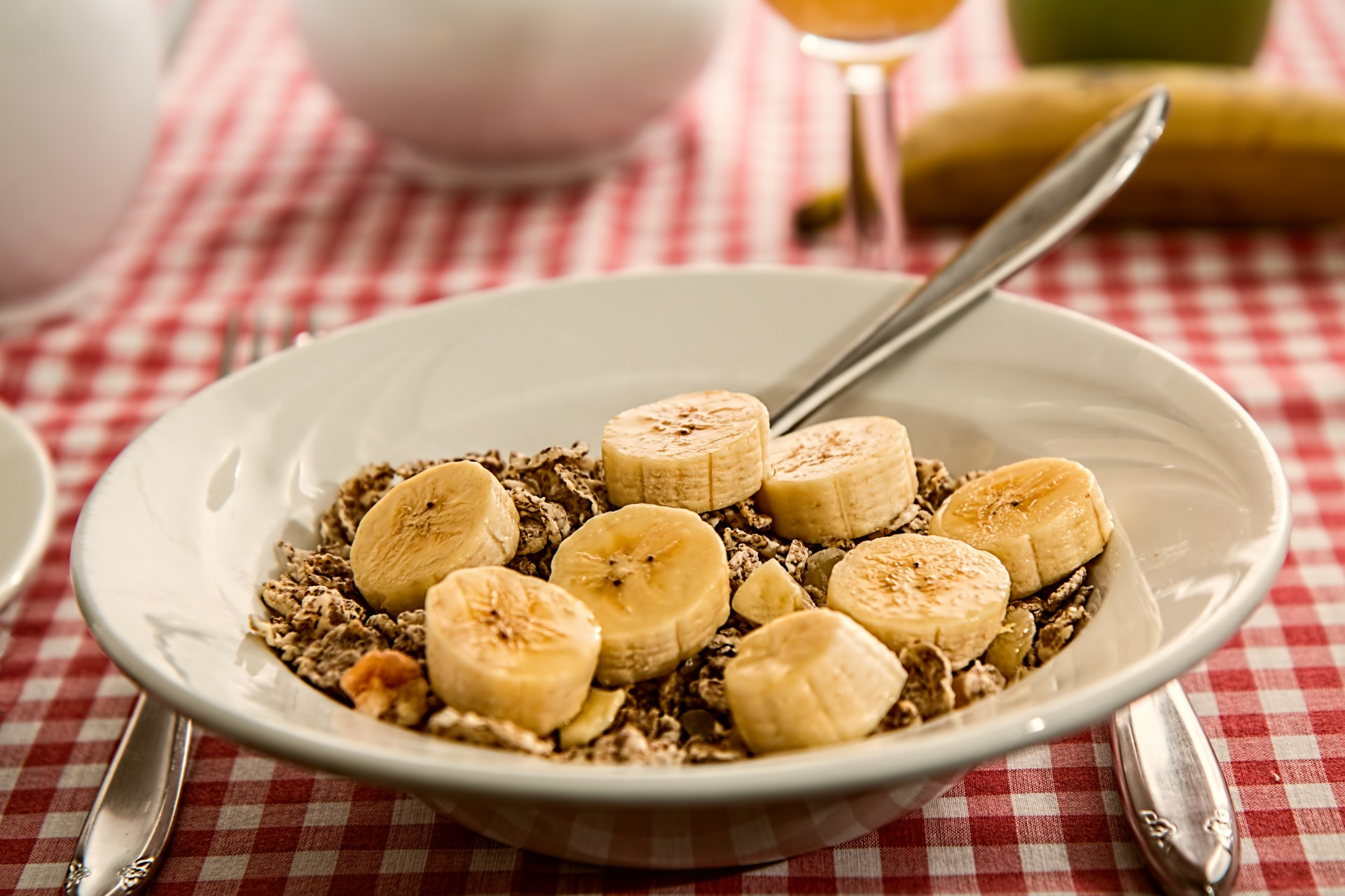 A fibrous cereal with fruit