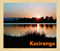 Sunset at Kaziranga