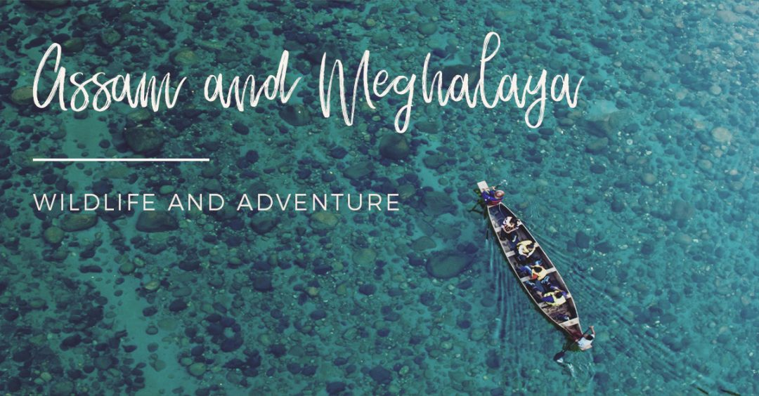 Assam and Meghalaya pics